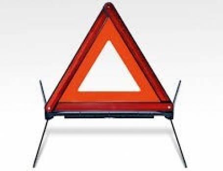 WARNING TRAINGLE