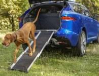 PET PRODUCTS PET ACCESS RAMP